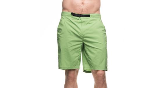 Houdini Crux korte broek Heren groen